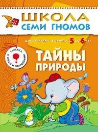 ШСГ: 6 год обучения: Тайны природы - Мозаика-Синтез