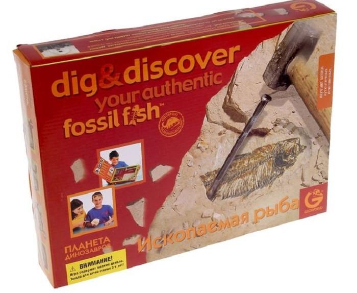 Набор палеонтолога: Ископаемая рыба - Geoworld