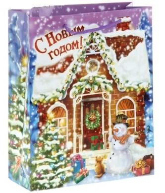 Пакет Снежный Домик 26х32 см