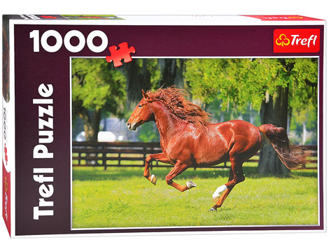 Пазл: Мчатся кони (Галоп), 1000 элементов – Trefl